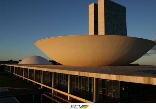 Diretor da FCV está em Brasília em audiência pública